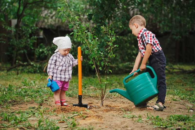 Børnevenlig have – få 6 tips her