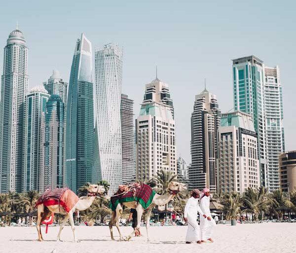 Der er mange oplevelser i Dubai - få insider-tips til at opleve Dubai som en lokal.