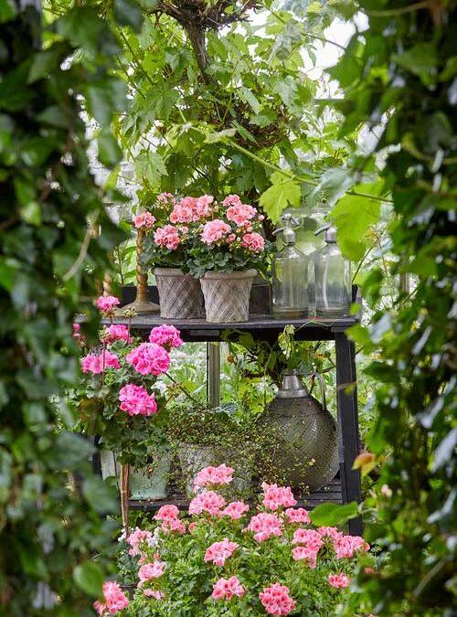 Blomstrende paradis for enhver smag