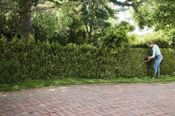 Detaljer i haven betaler sig ved hussalg
